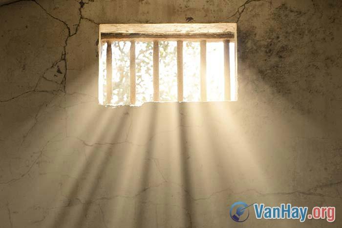 Bài thơ Tâm tư trong tù hay chính là một khúc ca tâm trạng của người thanh niên trẻ - một cánh chim tự do bị giam cầm khát khao được sổ lổng tung cánh. Qua phân tích bài Tâm tư trong tù hãy làm rõ nhận định trên