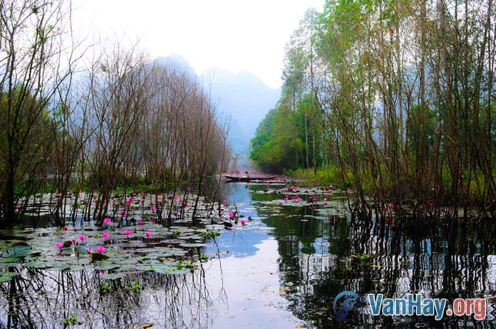 Bình giảng bài thơ Hương Sơn phong cảnh ca của Chu Mạnh Trinh