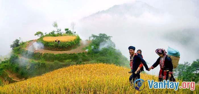 Bình giảng đoạn thơ sau trong bài Việt Bắc của Tố Hữu: Ta về, mình có nhớ ta ... Nhớ ai tiếng hát ân tình thuỷ chung