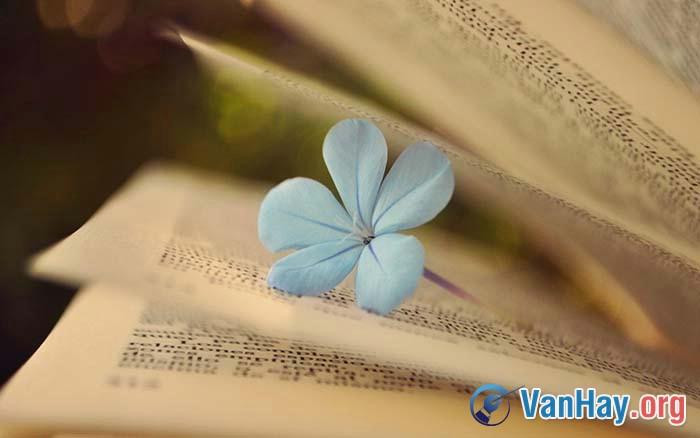 """Trình bày suy nghĩ của mình đối với ý kiến của nhà văn Thạch Lam: """"Văn chương là một thứ khí giới thanh cao và đắc lực mà chúng ta có, để vừa tố cáo và thay đổi một thế giới giả dối và tàn ác, vừa làm cho lòng người được thêm trong sạch và phong phú hơn"""""""