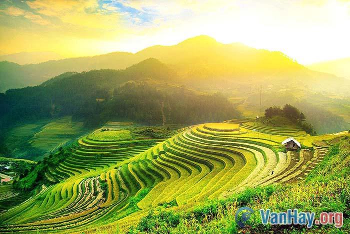 Bài thơ Việt Bắc là tiếng hát nghĩa tình sắt son thuỷ chung của mình với ta