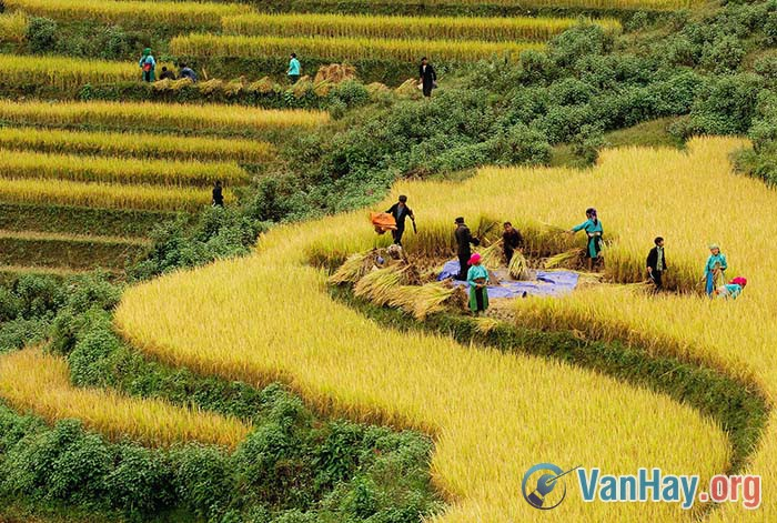 Việt Bắc sẽ đổi thay trong sự đổi thay của đất nước